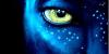 Media Markt: Avatar – Aufbruch Nach Pandora Collector's Edition auf Blu-ray für 9,90€