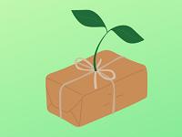 Die 17 besten nachhaltigen Geschenkideen – umweltbewusst schenken