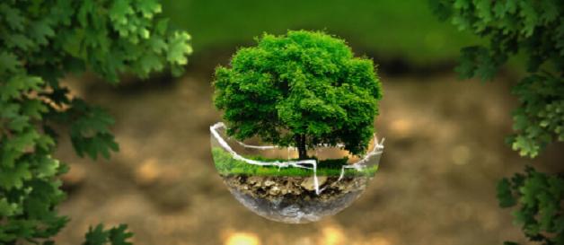 nachhaltige deals