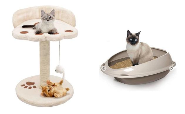 ManoMano Tierbedarf Katzen